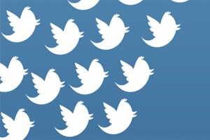 Seguidores-de-Twitter